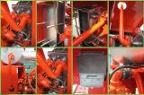 Cummins-Biogas Genset/Biogas-Generator-Biogas-Pflanze