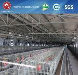 manuelles Rahmen-Galvano-galvanisierte/heiße Dipped/PVC überzogene Huhn-Rahmen der Schicht-6X3-Tier/Ei-Legehenne-/Batterie für Südafrika