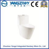 Toilette en céramique de remous excessif de Siphonic d'Eau-Économie