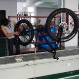 Fujiang bici gorda eléctrica del neumático de 26 pulgadas, bicis gordas eléctricas de la montaña