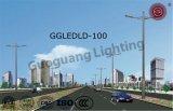Indicatore luminoso di via impermeabile di nuovo disegno IP65 LED