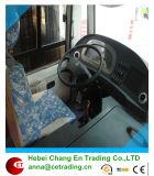 Asiento del omnibus/sofá del omnibus