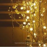 Da festão branca da flor de Rosa da decoração do casamento luzes feericamente da corda