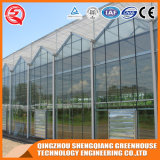 Serre chaude en aluminium commerciale de feuille de polycarbonate de profil de bâti en acier pour le fruit