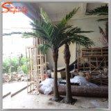 최신 판매 실내 옥외 훈장을%s 인공적인 코코야자 나무