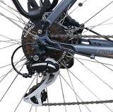 El modelo de la ciudad Mediados de-Conduce la bicicleta eléctrica del motor (TDB18Z)