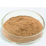 Shiitake-Pilz-Auszug mit den 20%~40% Polysacchariden