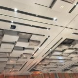 La pente élevée a personnalisé le plafond en aluminium de panneau avec le modèle de mode