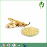 Extrait de soja biologique Isoflavone de soja 20% -90%