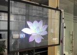 Película de Holo, película transparente da projeção traseira para anunciar no indicador