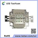 O diodo emissor de luz UV ilumina 365nm, 395nm 10W, diodo emissor de luz UV do poder superior