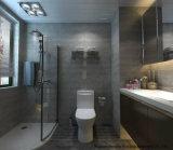 고품질 도와 시멘트 디자인 Foshan 제조 600X600mm (BMC06)에서 시골풍 사기그릇 지면 도와