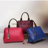 OEMの熱い販売の方法多彩なPuleatherladyのハンドバッグ
