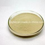 白い腎臓豆のエキスPhaseolin 1%~2%の減量