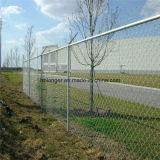 Покрынная PVC гальванизированная загородка ячеистой сети звена цепи