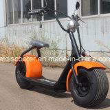 Lithium Scooter électrique 1000W Fat Tire Harley EEC Certificat