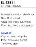 코너 분야 모양 알루미늄 합금 2 고쳐진 미닫이 문 샤워실 (BL-Z3511)