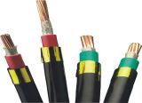 XLPE résistant au feu a isolé le câble d'alimentation de cuivre blindé de bande en acier de jupe de PVC