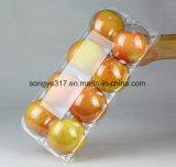Caixa desobstruída da bolha do animal de estimação para a fruta