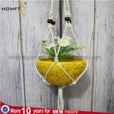 Weißes Farben-Seil-hängende Pflanze