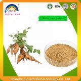 Polvo natural de Mirifica del Pueraria de la raíz