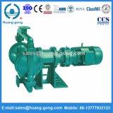 Tipo cicloidale pompa a diaframma di serie di Dby elettrica per residui