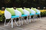 Vector y silla al aire libre para los muebles del jardín fijados (HCQ5)