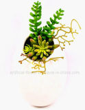Искусственний смешанный Стен-Повиснутый Succulent в баке S/L гончарни для общественного украшения