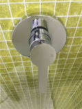 Wall Brass Shower Faucet (659103D)에 있는 워터마크 Round