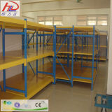 El media carga la estantería del almacenaje del almacén
