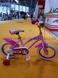 Baby Lovely Girl Cycle, Latest Children Bicicletas, Südamerika Style Bike für Sale