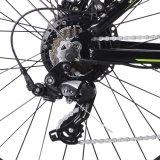 新しいブラシレスモーター電気マウンテンバイク