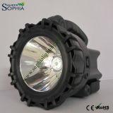 Sophia 10W ricaricabile impermeabilizza la torcia elettrica del CREE LED