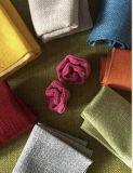 Tessuto di tela del poliestere per il sofà in decorativo tessuto