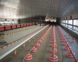 Camera di pollo prefabbricata con le strumentazioni automatiche