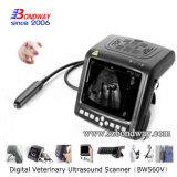 Veterinary оборудует блок развертки ультразвука цвета 4D Doppler с зондом