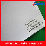 Flex Banner van uitstekende kwaliteit van pvc Frontlit (SF1010)