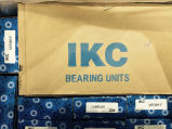 ベアリングUnit Ucf205かGrinding Machine Block Bearing Ucp212