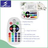 110V/220V 0-50m LED 색깔 지구 빛 리모트 관제사
