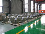 고명한 공장 공급 순수한 구리 200kVA/160kw 발전기 (JDG274H)