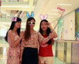 Meilleur cadeau promotionnel Selfie Stick (RK-MINI5)