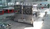 da água 3-in-1 máquina de enchimento 5L pura giratória/água mineral