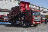 De Vrachtwagen van de Kipper van Auman Gtl van Foton 6X4/de Vrachtwagen van de Stortplaats