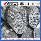 Het Roestvrij staal van de Leverancier van China Vlak voor Decoratie