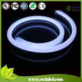 110V impermeabilizzano il mini neon del tubo del LED con 2 anni di garanzia