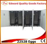 Volles Automatic Large Poultry Quail Egg Incubator für 20000 Eggs