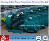 Il motore elettrico a tre fasi della gru di CA