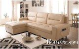 Champagne-ledernes Sofa-Bett für Haus-Gebrauch (SB007)