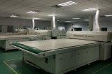 Los módulos solares fotovoltaicos de 300W Poly de Gran Planta de Energía