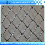 Treillis métallique de Corrosion-Résistance de maillon de chaîne